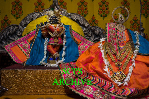 Darshan of the Day